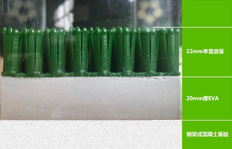 绿菱旱雪结构图